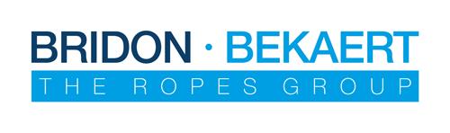 BBRG_logo