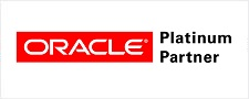 Oracle Development Support